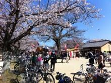 スタッフエージェントの軌跡-舞鶴公園 出店